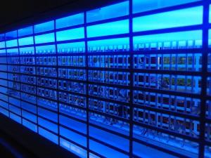 Elektriske fluefangere indfanger fluer og insekter via UV lampe og stødspjæld
