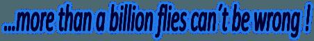 Insektfangere - Elektriske fluefangere med og uden limplader